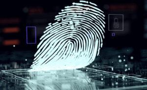 指紋の鑑定